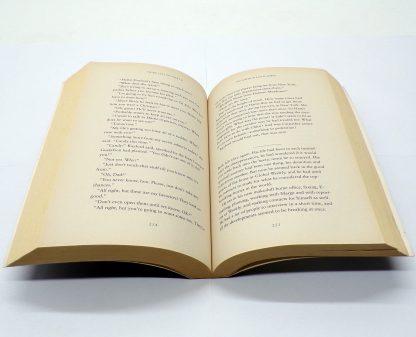 Tribulation Force Paperback by Tim F. LaHaye, Jerry B. Jenkins