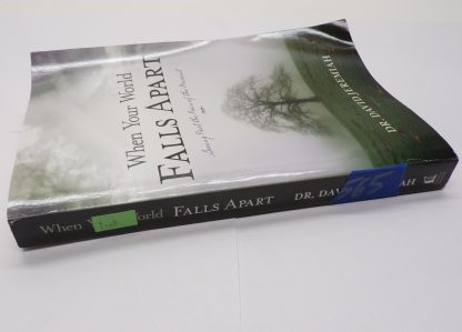 When Your World Falls Apart: See Past the Pain of the Present Paperback by David Jeremiah